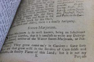 Culpepper's Herbal Sweet Marjoram